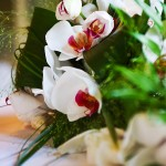 Wedding photography of orchid wedding flowers at Bovey Castle wedding