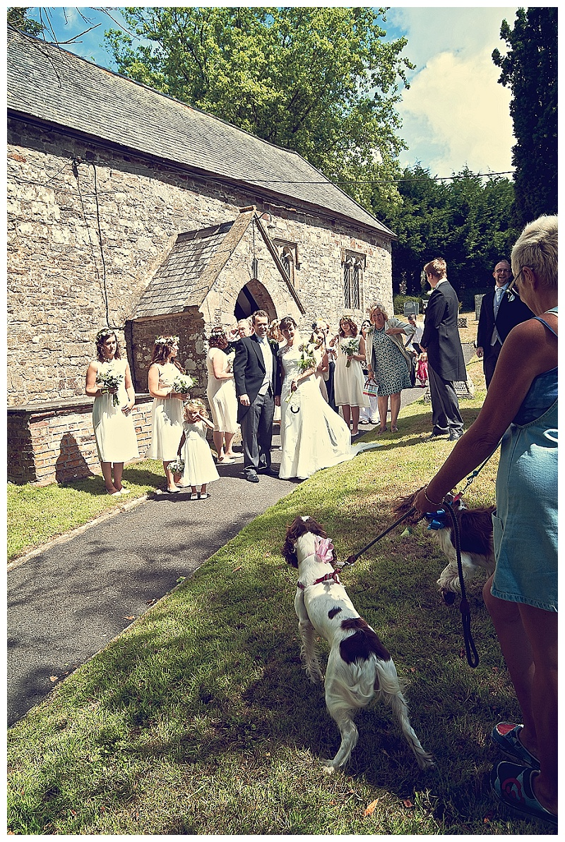 Devon wedding photographer_0161