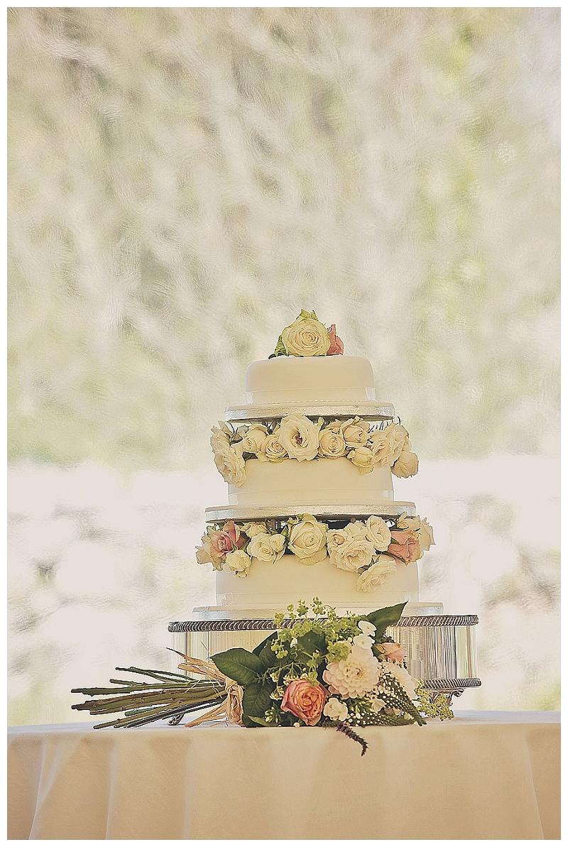 Devon wedding photographers_1134