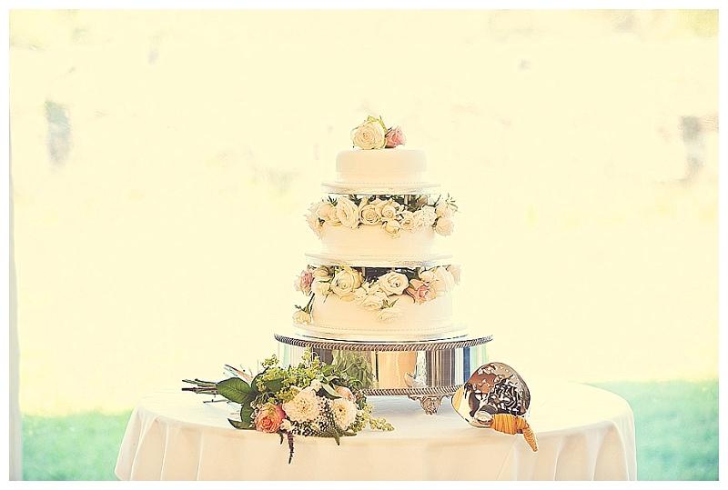 Devon wedding photographers_1229