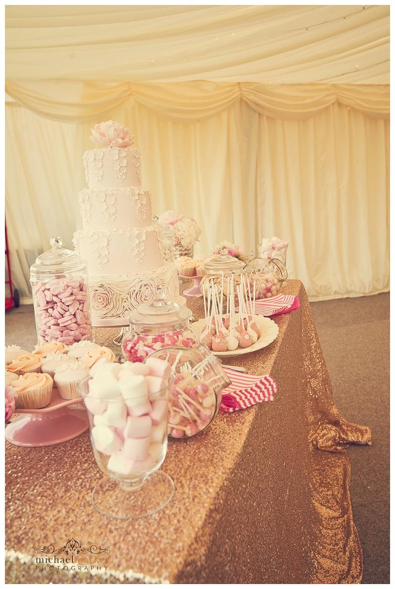 Cornish wedding (45)