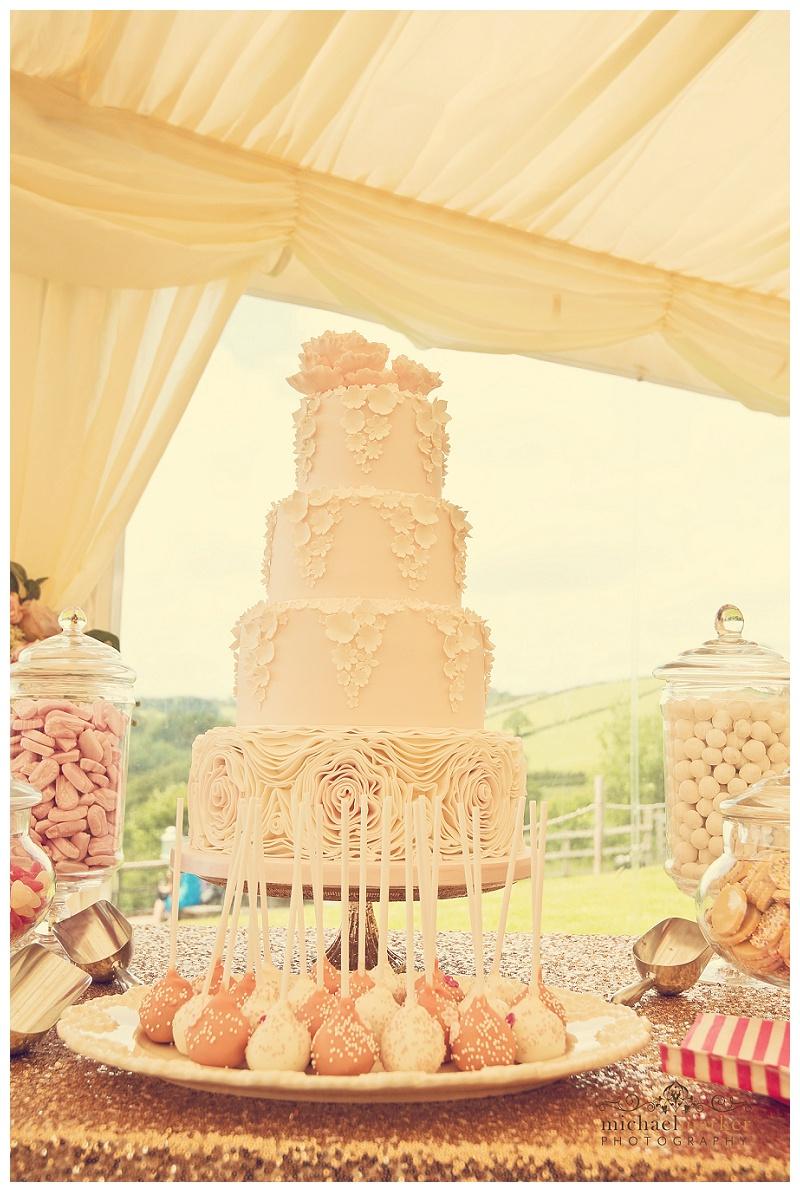 Cornish wedding (46)