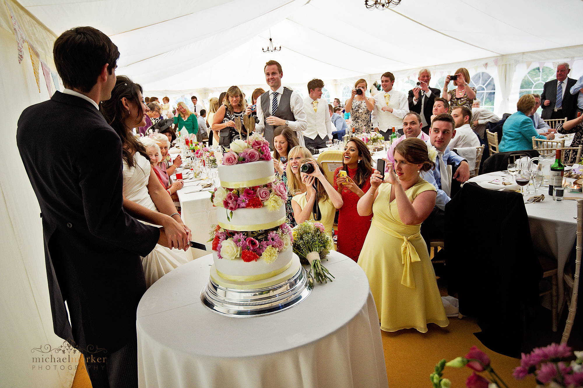 Cutting-the-cake-at-devon-wedding