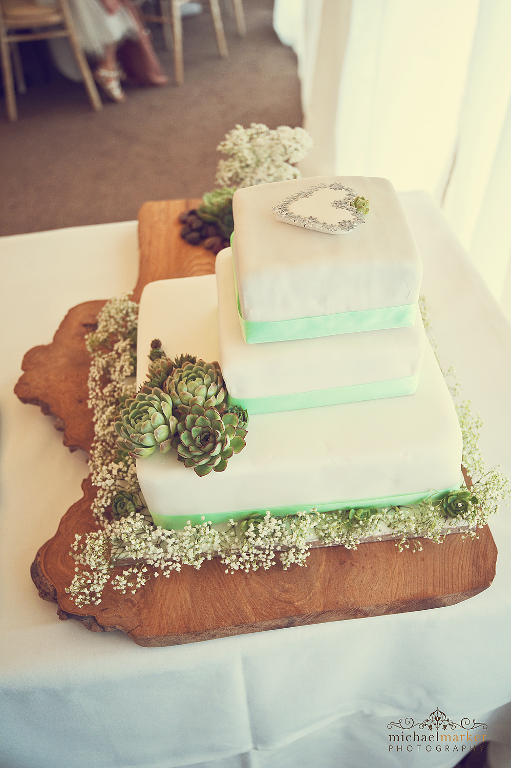 Wedding cake with succulents at Deer park near Exeter