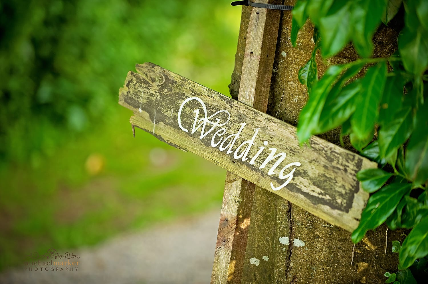 rustic wood and painted wedding sign